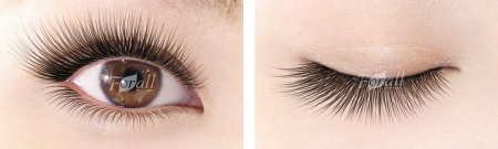 Gorgeous (コージャス) 中央から目尻に向かって濃く長くエクステンションをつけることで、ボリューム感のあるゴージャスな目元を演出。
